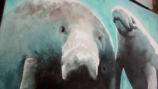 Manatee Watercolor Speed Painting Time Lapse