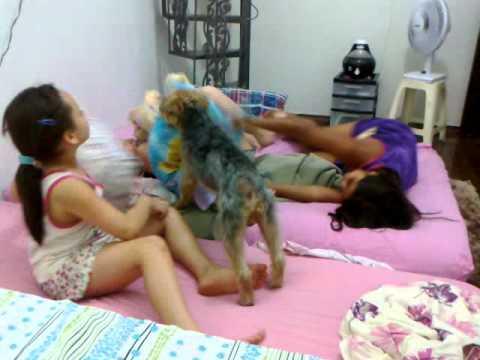meninas brincando aqui em casa