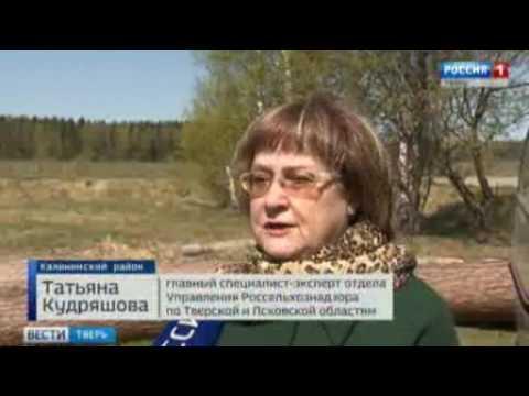 О загрязнении земель сельхозназначения в Калининском районе Тверской области
