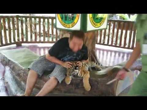Amazing Safari Trip, Bogor, Indonesia | Backpacking 50days Journey | Video Blog
