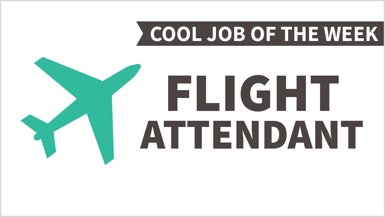 cool job of the week flight attendant cool job of the week flight attendant