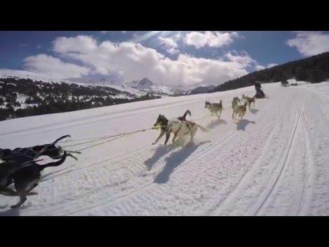 Grandvalira Mushing by GoPro - Activities Andorra 2016