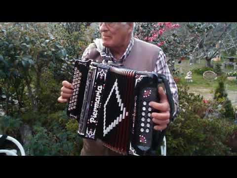 Concertina no Bolo. Castanheira de Pera