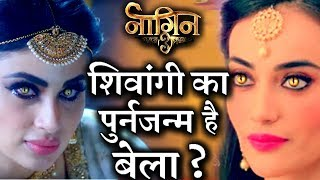 is there any secret connection between bela shivangi in naagin 3 ?