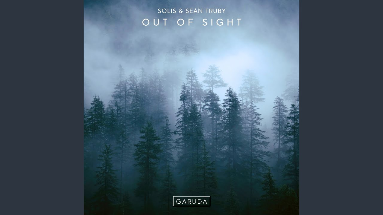 Out Of Sight (Extended Mix)