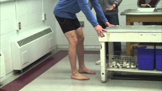 acl injury rehabilitation