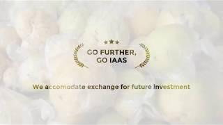 IAAS Exchange Program in Indonesia 2018
