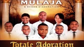 Gambar cover Zua Nkembo (Franck Mulaja et Echos d'adoration)   Worship Fever Channel
