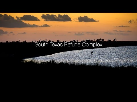 South Texas Refuge Complex