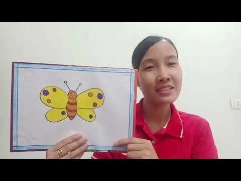 Hướng dẫn tạo hình: vẽ con bướm