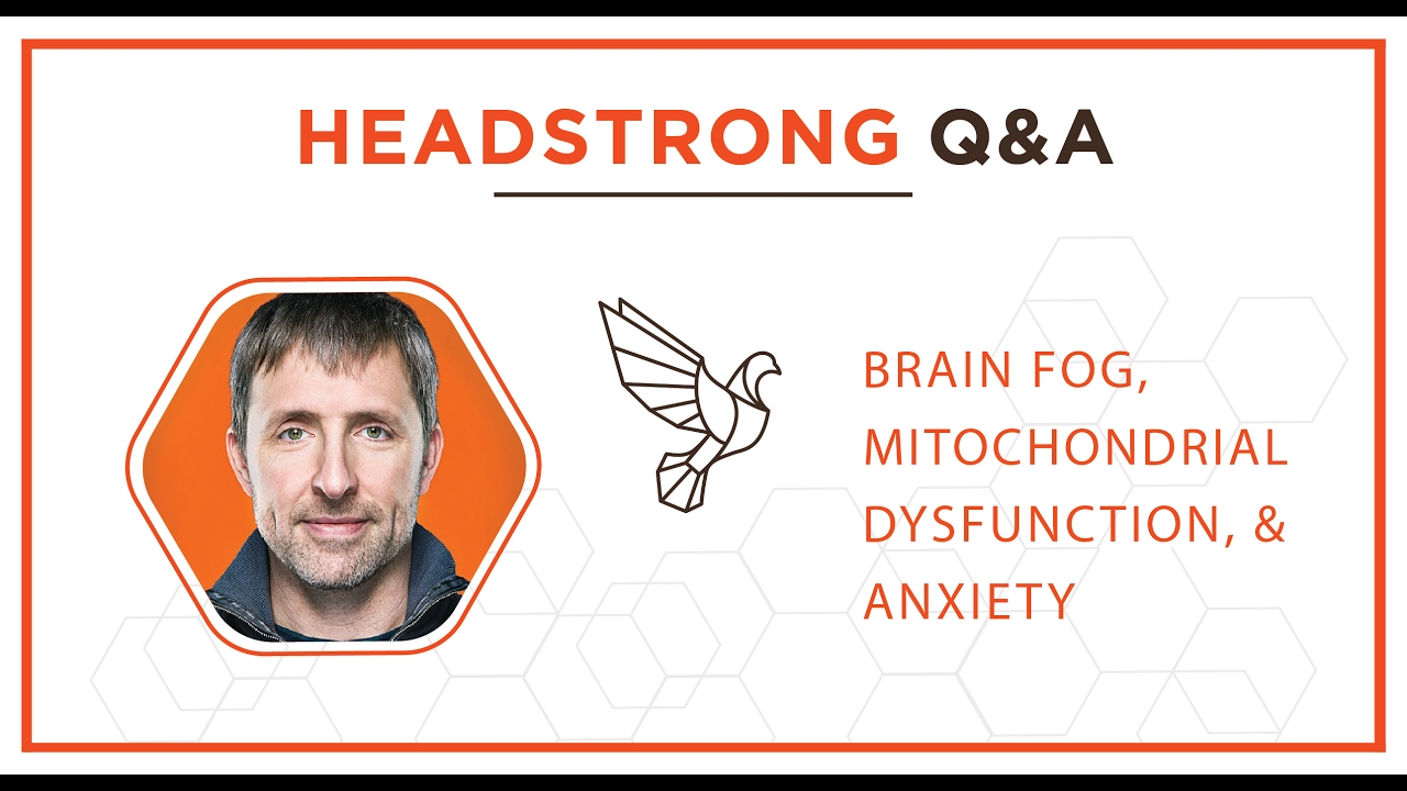 head strong q a dave asprey and dr mark atkinson head strong q a dave asprey and dr mark atkinson