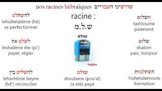 Racineshlm
