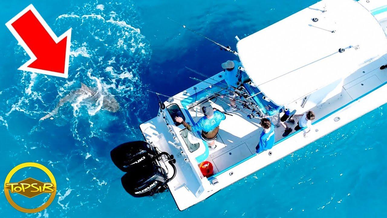 10 การโจมตีจากปีศาจท้องทะเลที่อาจทำให้คุณลืมหายใจ (น่ากลัว)