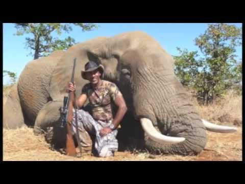 Owen Martin Elephant hunt 2013