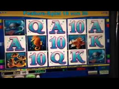 online casino list dolphin pearls