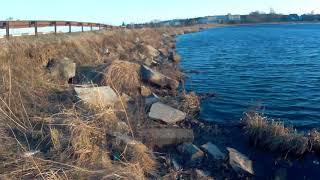 Проверяю камеру AC Robin Zed 2 на озере