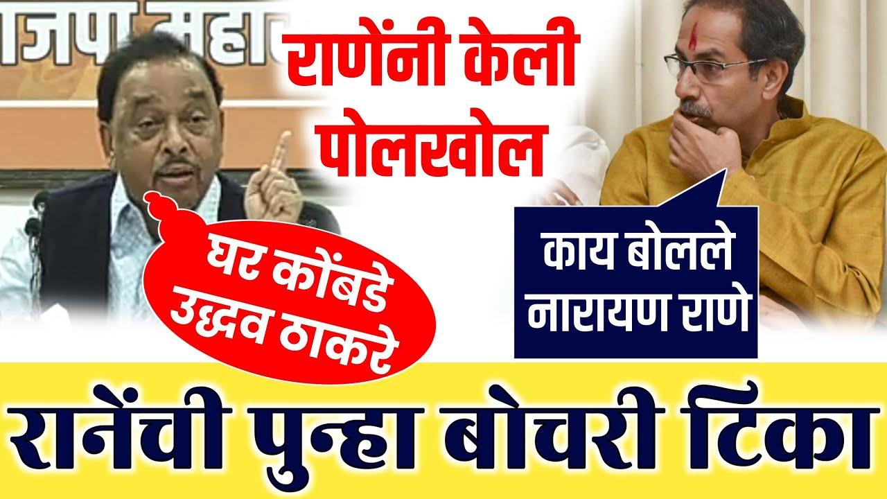 नारायण राणे आदित्य ठाकरेबद्दल Narayan Rane on Uddhav Thackeray | Narayan Rane Vs Shivsena | BJP