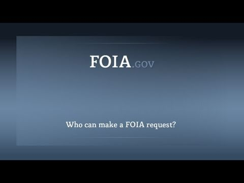 Who can make a FOIA request?