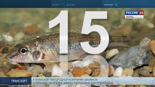 Из Красной книги Прикамья исключили 15 видов растений и животных