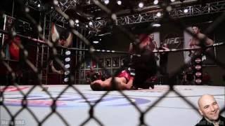 Best MMA K.O.s