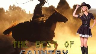 Montgomery Gentry - Where I Come From *HQ*
