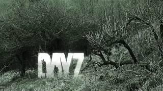 Запуск пиратского DayZ StandAlone и запуск локального сервера!!!