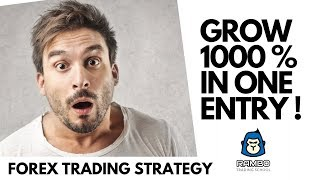 The best way to grow 1000 % in Forex Trading - No Secret!