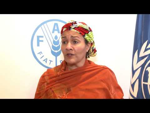 Remarks by  Nigeria's Environment Minister, Amina Mohammed, at FAO.