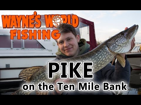 Pike on the Ten Mile Bank