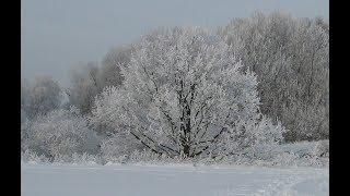 Kleiner Wintergruß für dich ! Liebe Wintergrüße