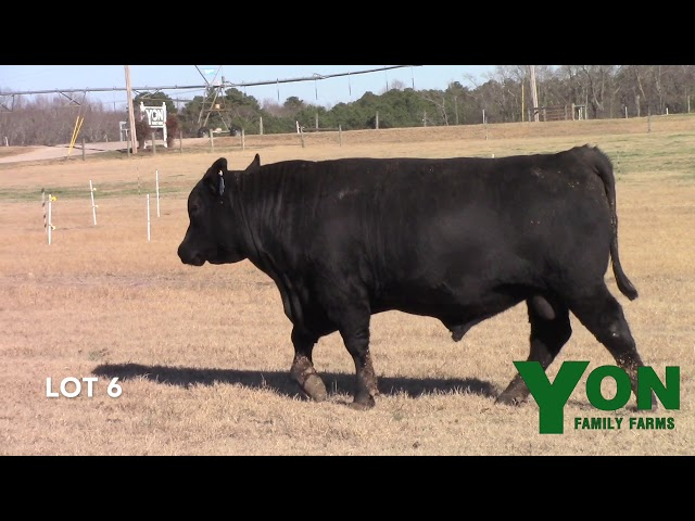 Yon Family Farms Lot 6