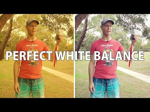 PERFECT WHITE BALANCE Your Video in 2 MINUTES