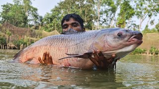 Monster Fish Catch With Net! Amazing Net Fishing! Best Fishing Video