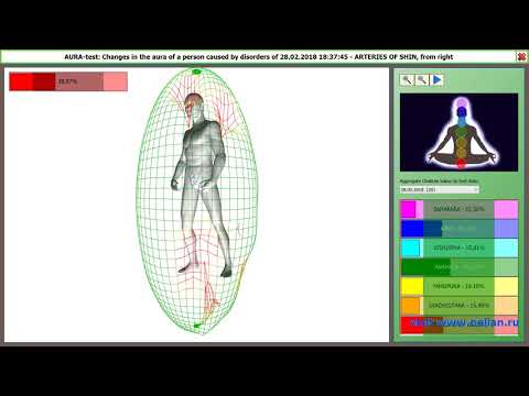 064 ENG Dianel-2 software, Aura and Chakras analysis and preview function