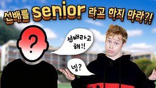 영어로 선배를 [Senior]라고 하면 안 되는 이유?!