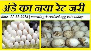 revised and fresh egg rate opening today in diffrent egg mandi all  over india