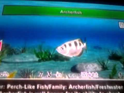 Fishing Master World Tour Almost All Fishes!!=-O