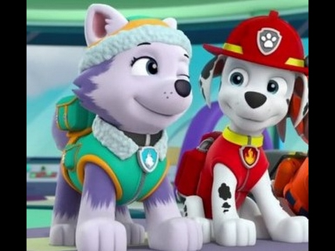 Paw Patrol Everest And Marshall Valentines Tribute