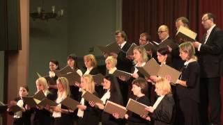 VEF Kultūras pils jaukto koru kluba koncerts - 24.11.2012. VEF k.p - 00259.MTS