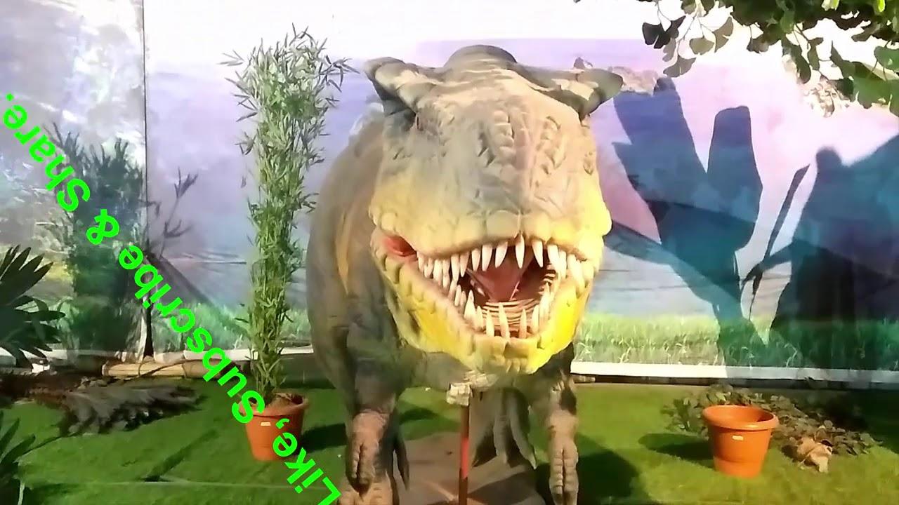 3d Exhibition In Borivali : White house model exhibition animatronic animals d