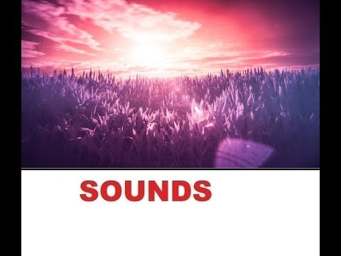 Dream Sound Effects All Sounds