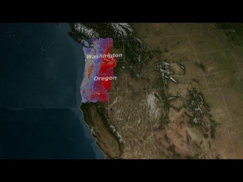 NASA   Landsat Senses a Disturbance in the Forest