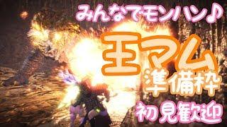 【MHW】王マム準備枠 狂乱モード用の装備【224日目】 thumbnail