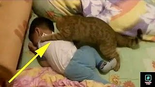The baby started to cry but what the cat did is amazing