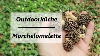 Outdoorküche Tür Türkiye : Category:snowbank fungi wikivisually