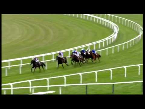 So You Think - Prince Of Wales's Stakes 2011
