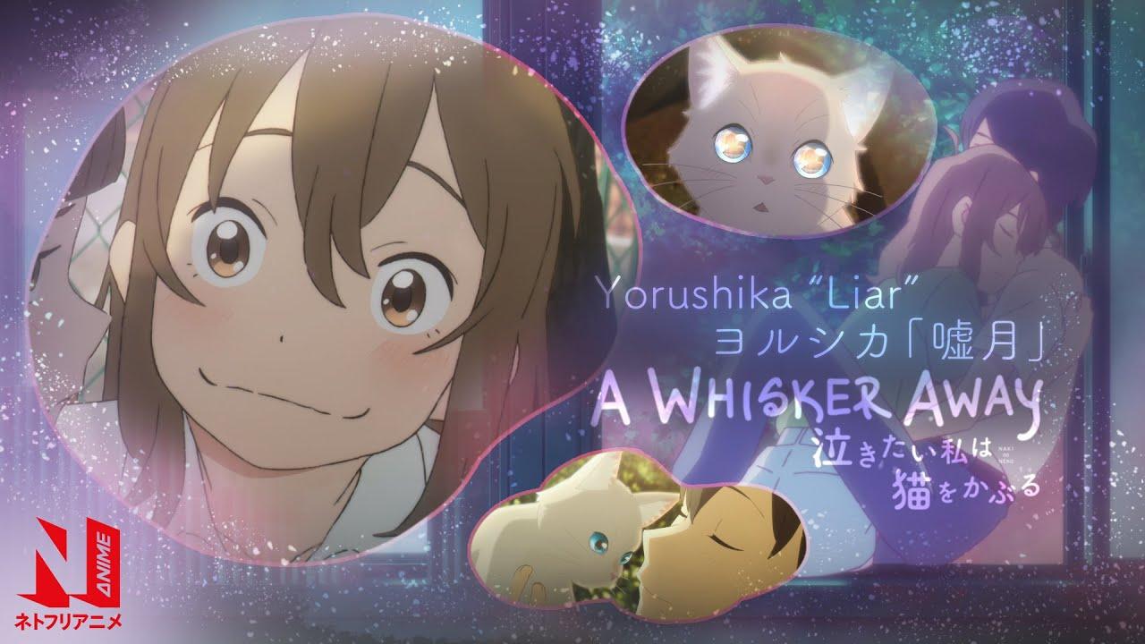 Download A Whisker Away | Liar - Yorushika | Promotion Video | Netflix Anime