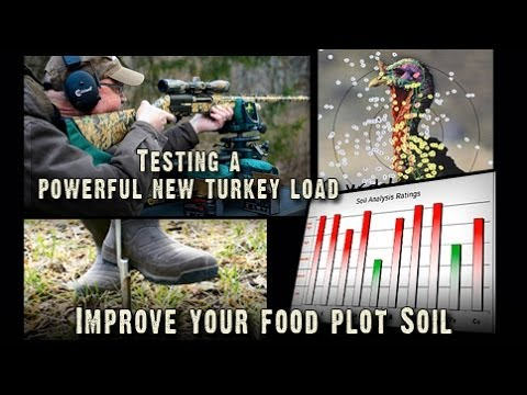 Turkey Hunting: Testing A New Turkey Load, 50 to 70 Yards? (#226)  @GrowingDeer tv