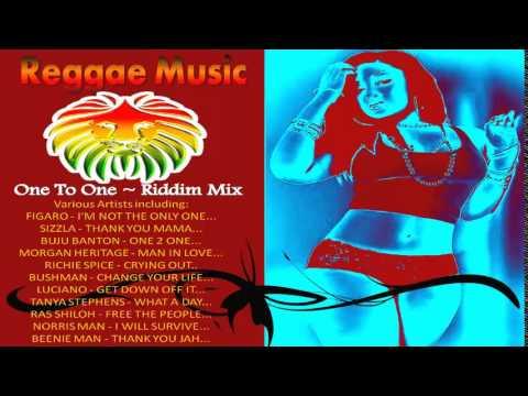 One To One Riddim Mix ~ 2015 Reggae Music Mix