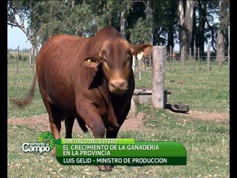 Santiago del Estero (23/05/2015)